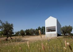 A concrete wine cellar props up one end of this tall white house by architect João Mendes Ribeiro, located on an estate with an olive grove and a vineyard