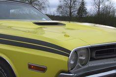 Challenger -71  R/T hood