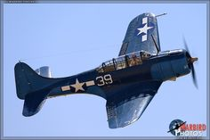 Planes of Fame Airshow 2013: Day 1.Douglas SBD-5 Dauntless dive & patrol bomber,in use for the early Pacific battrles.The slotted dive brakes clearly visible at rear of wings.