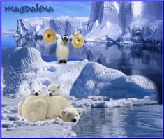 Cute Bears, Gifs, Polar Bear, Bunt, Animals, Friends, Funny Pics, Animais, Animales