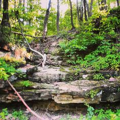 Tyler State Park, Bucks County PA