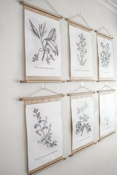 Farmhouse wall decor inspiration and ideas: Gallery wall pretty poster frames with vintage botanical prints. Farmhouse wall decor inspiration and ideas: Gallery wall pretty poster frames with vintage botanical prints. Diy Vintage, Vintage Wall Art, Vintage Walls, Vintage Home Decor, Vintage Frames, Vintage Posters, Vintage Flower Prints, Vintage Botanical Prints, Botanical Decor
