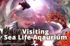 Sea Life Aquarium in Grapevine, TX