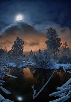Rising Moon in Winter