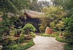Chinese Garden Plants – How To Create A Chinese Garden Style