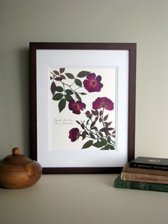 This etsy shop has beautiful pressed flower prints.