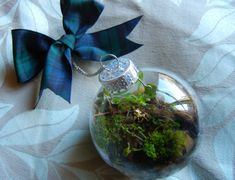 Be unique this Christmas with this DIY terrarium. Learn how to make personalized Christmas ornaments using a hanging glass terrarium. Have fun making this! Terrarium Diy, Hanging Glass Terrarium, How To Make Terrariums, Small Terrarium, Diy Christmas Baubles, Personalized Christmas Ornaments, Christmas Decorations, Christmas Tree, Holiday Tree