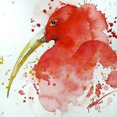 pinturas-acuarelas-animales-tilen-ti (1)