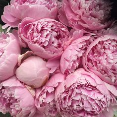 nice vancouver wedding Why bother with a photo filter when we have PEONIES in August!! Amazing @roaflorals!! #keepsakeevents #peonies #weddingplanner #vancouverwedding #vancouverwedding