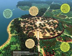 Kuhikugu, known to archaeologists as site X11, is the largest pre-Columbian town yet discovered in the Xingu region of the Amazon.
