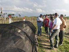 Visita a los usuarios de biogás para comprobar resultados de esta práctica
