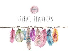 Watercolor Clipart feathers tribal boho by MoniqueDigitalArt Watercolor Feather, Watercolor Cactus, Feather Painting, Watercolor And Ink, Feather Clip Art, Tribal Feather, Blue Feather, Illustration Blume, Pencil Illustration