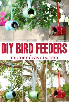 DIY Bird Feeders - a great project to make with the kids! by alberta