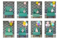 Month by month idea with balloons tuckeredout
