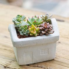 Are you interested in our concrete house shaped planter? With our house shaped vase container pot you need look no further.