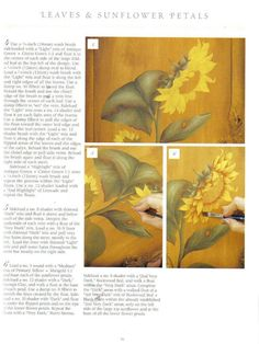 Flowers you can Paint - terebauer - Álbuns da web do Picasa