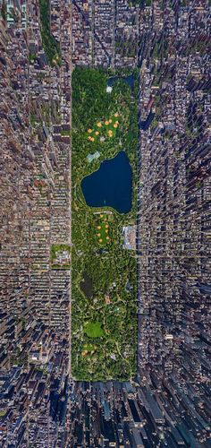Central Park, NYC >>> Perfect view!