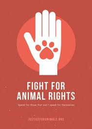 Image Result For Posters To End Animal Cruelty Animal Rights Animal Cruelty Animals