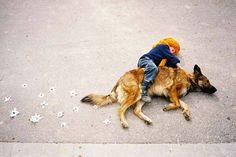 犬もおとなしく付き合ってくれる