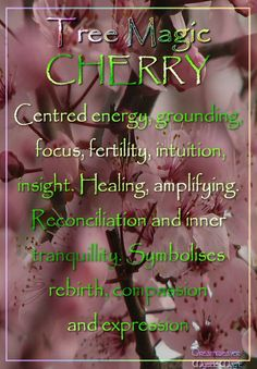 CHERRY Centred energy, grounding, focus, fertility, intuition, insight. Healing, amplifying. Reconciliation and inner tranquillity. Symbolises rebirth, compassion and expression