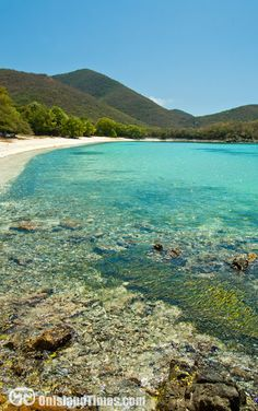 One of my favorite snorkeling beaches on St John - Little Lameshur Bay. Want to know more? Visit http://onislandtimes.com/south-shore-beaches/
