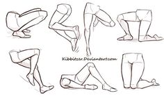 Legs anatomy and postures, kness