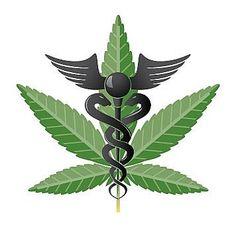 10,000-year History of Marijuana use in the World