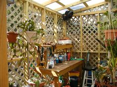 orchid mini shade house