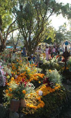 cemetery day of the dead, Huasteca region of Veracruz, MX