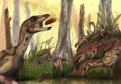 Early dino was turkey-sized, social plant-eater | #GeologyPage