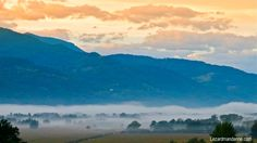 Brume matinale à Lumbin-LezardMandarine