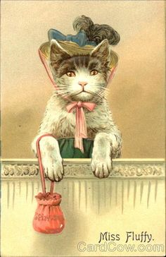 victorian cat with a frame around her and he paws hanging down outside of the frame
