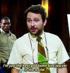 Charlie Kelly is well versed in bird law.