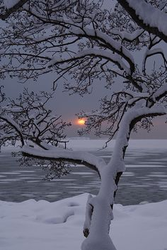 Almost Gone, winter sunset, Finland