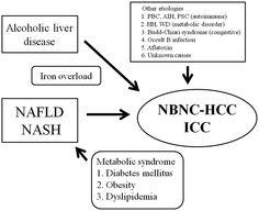 Non-B, non-C hepatocellular carcinoma (Review)