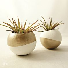 Bridesmaids gifts: Metallic gold air plant pots from Sea & Asters