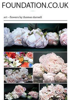 thomasdarnell.com Thomas Darnell, Painting Flowers, Art Blog, Peony, Flower Art, Bloom, Walls, Paintings, Wall Art