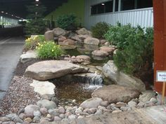 Gallery|Water Feature (POND) Ideas For Your Back Yard-Rochester NY - Acorn Ponds & Waterfalls