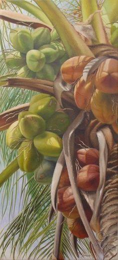 Cocos.jpg - Pintura, 126x20x58 cm © 2009 por Rose Fernandes - realismo, naturaleza, cocos, BRASIL, pintura de la naturaleza