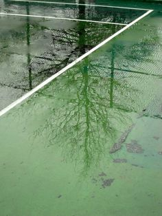 Available for sale from Robert Klein Gallery, Jessica Backhaus, Greenpoint, from the series One Day in November Chromogenic Print, 8 × 11 Vive Le Sport, Days In November, Land Of Oz, Wind And Rain, Landscape Photographers, Color Photography, My Favorite Color, Favorite Things, Shades Of Green