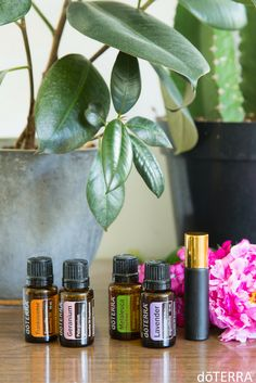 Roller Bottle Blend: Combine 5 drops Frankincense, 4 drops Geranium, 3 drops Melaleuca, and 5 drops Lavender for a healthy skin blend!