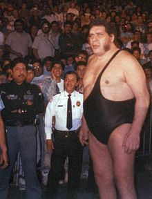 "André René Roussimoff (May 19, 1946 – January 27, 1993),[3][6] best known as André the Giant, was a French professional wrestler and actor. His best remembered acting role was that of Fezzik, the giant in the film The Princess Bride.[1] His size was a result of acromegaly, and led to him being called ""The Eighth Wonder of the World"".[5][8]"