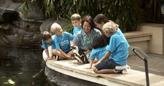 """#Hilton Hawaiian Village Waikiki Beach Resort offers """"Camp Penguin"""" specially designed for children ages 5 - 12 who want to immerse themselves in the rich history and culture of Hawaii."""