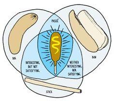 Image result for venn diagram funny