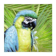 Toile perroquet 90 x 90 cm CARACAS