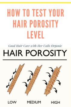 3 Ways to Test Your Hair Porosity