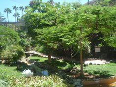 Jardines del Palmitos Park, Spain