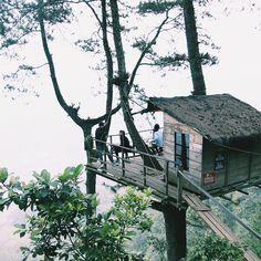 Omah Kayu di Malang. Dingin, tenang, menantang