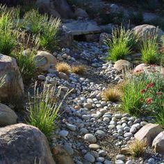 Garden Design Dry River Bed garden design dry river bed design inspiration 210010 decorating