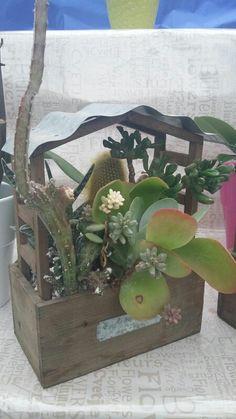 Casalunga - Vivaio piante e fiori in Montecchio Emilia, Emilia-Romagna